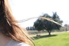 Reto 2: Suspiros del viento.
