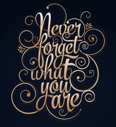 Never Forget What You Are by Jan Renor Curioso