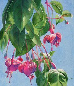 """FUCHSIA DANCE watercolor floral painting"" - Original Fine Art for Sale - © Barbara Fox"