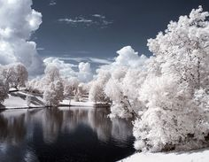 vigeland park during the winter, oslo, norway