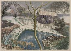 John Nash (1893‑1977)   Wild Garden, Winter /  1959  / Watercolour on paper / 406 x 571 mm Collection Tate