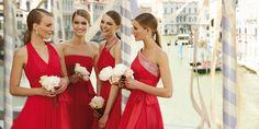 Pronovias presents its 2013 cocktail dresses | Pronovias