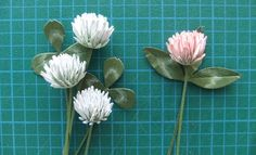How to make a paper clover flower using daisy flower dies/punches and white cardstock. Step-by-step written instructions can be viewed at: http://frommycraft...