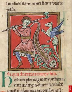 Man holding a halberd, with a dragon and a scorpion. From a manuscript of medical and herbal texts, made in England or France in the last quarter of the 12th century