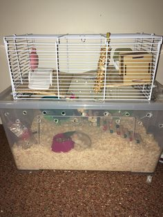 Bedding for Hamsters . Bedding for Hamsters . How to Choose the Best Kind Of Bedding for Hamsters Hamster Bin Cage, Hamster Life, Hamster House, Hampster Cage, Best Small Pets, Hamster Bedding, Rat Toys, Syrian Hamster, Ideas