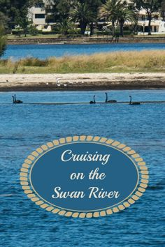 River cruise from Perth to Fremantle, Western Australia