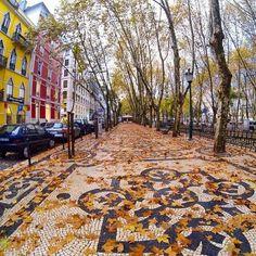 Av. Liberdade, Lisboa, Portugal...no outono as folhas das árvores caem formando uma bela paisagem...