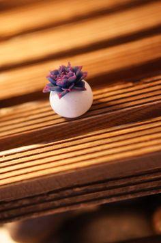 Handmade polymer clay succulent plants by KarenHandmadeGarden