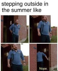 Texas Summers be like Orange Is The New Black, Hate Summer, Summer Heat, Summer Humor, Funny Summer, Have A Laugh, Just For Laughs, Funny Posts, Laugh Out Loud