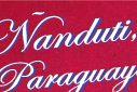 Nanduti, Paraguayan Lace by Annick Sanjurjo