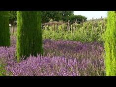 1/4 The Gourmet Garden - Monty Don's French Gardens- tv series on currently on abs TO DIE FOR!