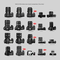 CANON EOS Kiss X6i(EOS 650D / Rebel T4i) & Other cameras comparison 5/6 by foxfoto_archives, via Flickr