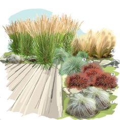 43 Low Maintenance Backyard Landscaping Ornamental Grasses 43 Low Maintenance Backyard Landscaping O Shade Grass, Garden Design, Plants, Grasses Landscaping, Landscape Curbing, Low Maintenance Garden Design, Ornamental Grass Landscape, Garden Planning, Low Maintenance Backyard