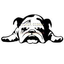 Resultado de imagen de bulldog ingles wallpaper