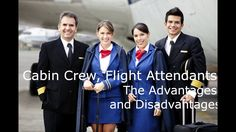Cabin Crew, Flight Attendants, The Advantages and Disadvantages of an Ai...
