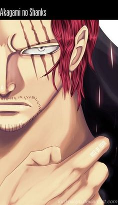 Hakagami no Shanks one piece