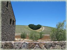 Heart Hill Vineyard at Niner Wine Estates in Paso Robles wine country