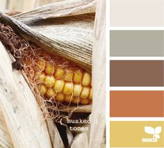 husked tones - color palette, love the brown, orange, and yellow.similar to color palette in other house