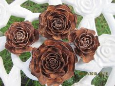 3 Doz .  Rose Pine Cones or Cedar Rose , From The Deodar Cedar Tree ( Cedrus  Deodara )