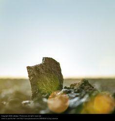 Foto 'gefrorene erden' von 'kallejipp'