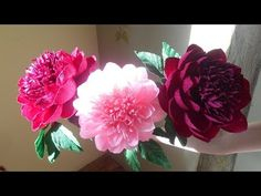 Flowers from crepe paper | Giant Roses for Photoshoot | Part 1 - YouTube