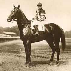 Man O' War (1917-1947) Arguably one of the greatest thoroughbred racehorses in history.  He was 20 for 21 starts, and set several track records, including one where he beat the competition by 100 lengths!  What a horse!