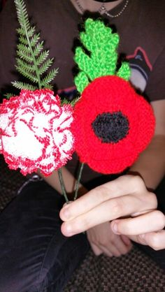 Lacy carnation and knitted poppy