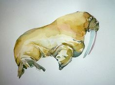 walrus in watercolor.
