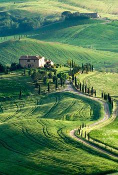 Tuscany/Italy For information on custom tours visit www.vitaliatours.com