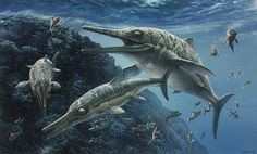 A pod of Ichthyosaurs hunt for prey in the Jurassic sea.