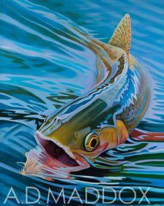 Lamar Cutty. Oil on Belgian linen. Limited edition prints available www.admaddox.com #admaddoxart #artoftheday #flyfishingart #lamarriver #yellowstoneflyfishing #yellowstonecutthroat