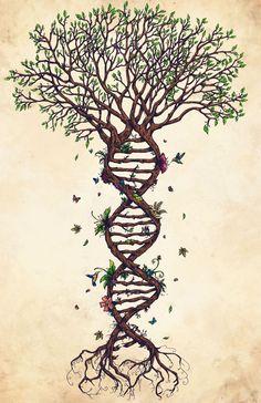 Attractive Tree Of Life Tattoo Design