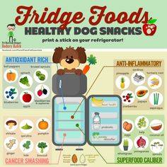 List of healthy foods for pup!