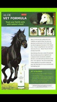 Az Aloe Vera First nemcsak embereknek, hanem állatoknak is kiváló formula. Az állatorvosnál hagyott számláid értéke jóval alacsonyabb lesz. www.mindigfit.hu