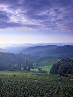 An amazing photo of the hilly Beaujolais region, in the southern department of Saone et Loire. #Beaujolais #Burgundy