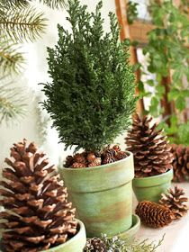 Crafts and Decor: Christmas Decorations with Pinecones - Part 1