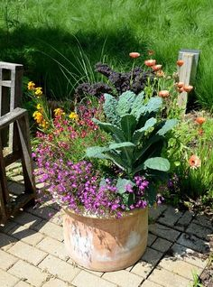 Add some Edible Plants to your container garden.  #herbplanters #containergarden #pepathomas
