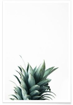 Pineapple as Premium Poster by Christoph Abatzis | JUNIQE
