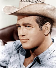 And why Paul Newman net worth is so massive? Paul Newman net worth is definitely at the very top level among other celebrities, yet why? Hollywood Actor, Hollywood Stars, Classic Hollywood, Old Hollywood, Hollywood Actresses, Connecticut, Ohio, Steve Mcqueen, Billy The Kid