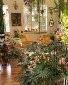 Hanging Plants, Indoor Plants, Indoor Plant Decor, Room Decor Bedroom, Diy Room Decor, Nature Bedroom, Wall Decor, Plantas Indoor, Apartment Plants