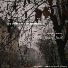 """We do not remember days; we remember moments.  - Cesare Pavese  """"The Burning Brand"""""""