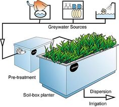 Greywater irrigation - grey waste treatment - (greywater is from water sources other than the toilet) - lots of ideas and options when perfectly clean drinking water is not necessary!