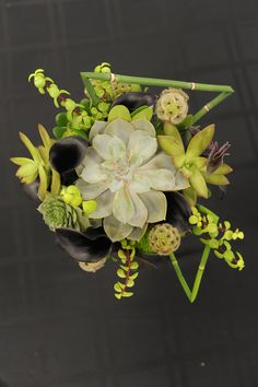 Isn't this bouquet of succulents amazing? The texture and contrasting color is so visually pleasing.