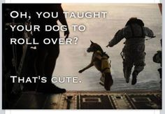 Respect all of our military members, even the ones with more than two legs!