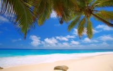Download wallpapers Seychelles, tropical islands, 4k, beach, ocean, seascape, palm trees, summer