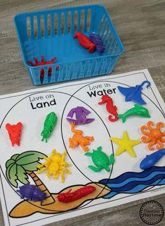 Venn Diagram Sorting Kindergarten Math Game #kindergartenmath #measurement Sorting Kindergarten, Measurement Kindergarten, Measurement Activities, Kindergarten Activities, Ocean Activities, Animal Activities, Montessori Activities, Toddler Activities, Sorting Activities