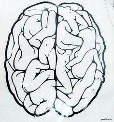 El cerebro de un hombre X...    GYNAECOMANIA  [noun]  also gynecomania; an excessive sexual obsession with women.