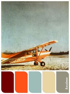 Orange Dreams color palette made by Susan Tuttle from one of her photos http://susantuttlephotography.com #color #palette #orange #retro