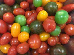Assorted tomatoes on Salad Day Tomatoes, Label, Aesthetics, Salad, Salads, Tomato Plants, Lettuce