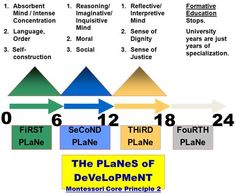 Four planes of development montessori essay